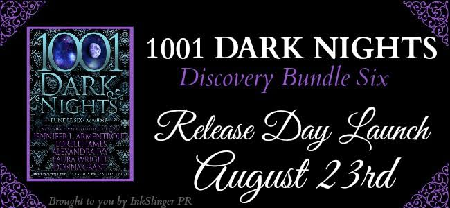 Discovery bundle 6 - RDL banner